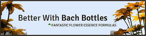 Better With Bach Membership Site